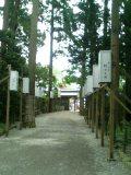 yahiko3